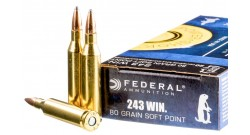 Патроны Federal .243Win Soft Point 80gr