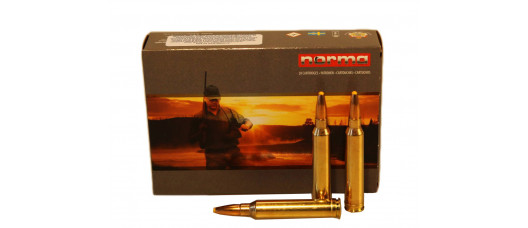 Нар.патроны Norma .300WinMag Plastic Point 180gr 11,7g