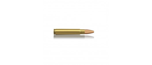 Norma 9,3x62 Plastic Point 285gr 18,5g
