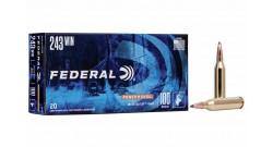 Federal .243Win Power Shok SP 100gr 6.5g