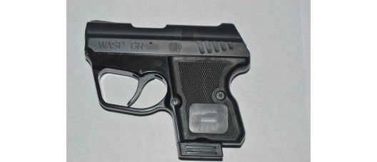 Пистолет WASP R