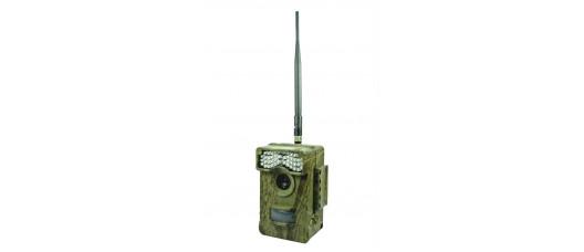 Фотоловушка LTL-Acorn 6511 wmg